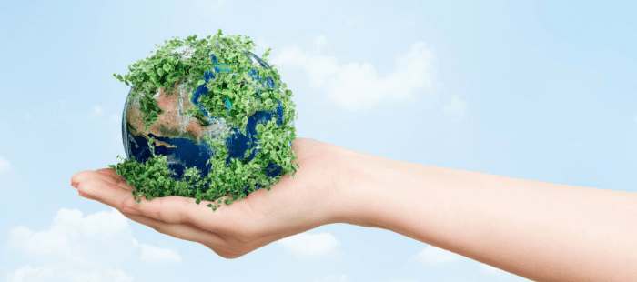 eco-friendly environment